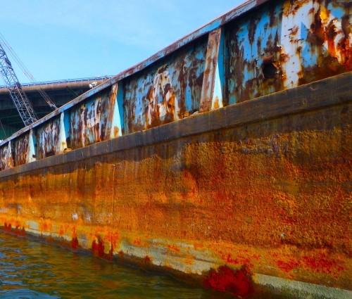 Orange rust