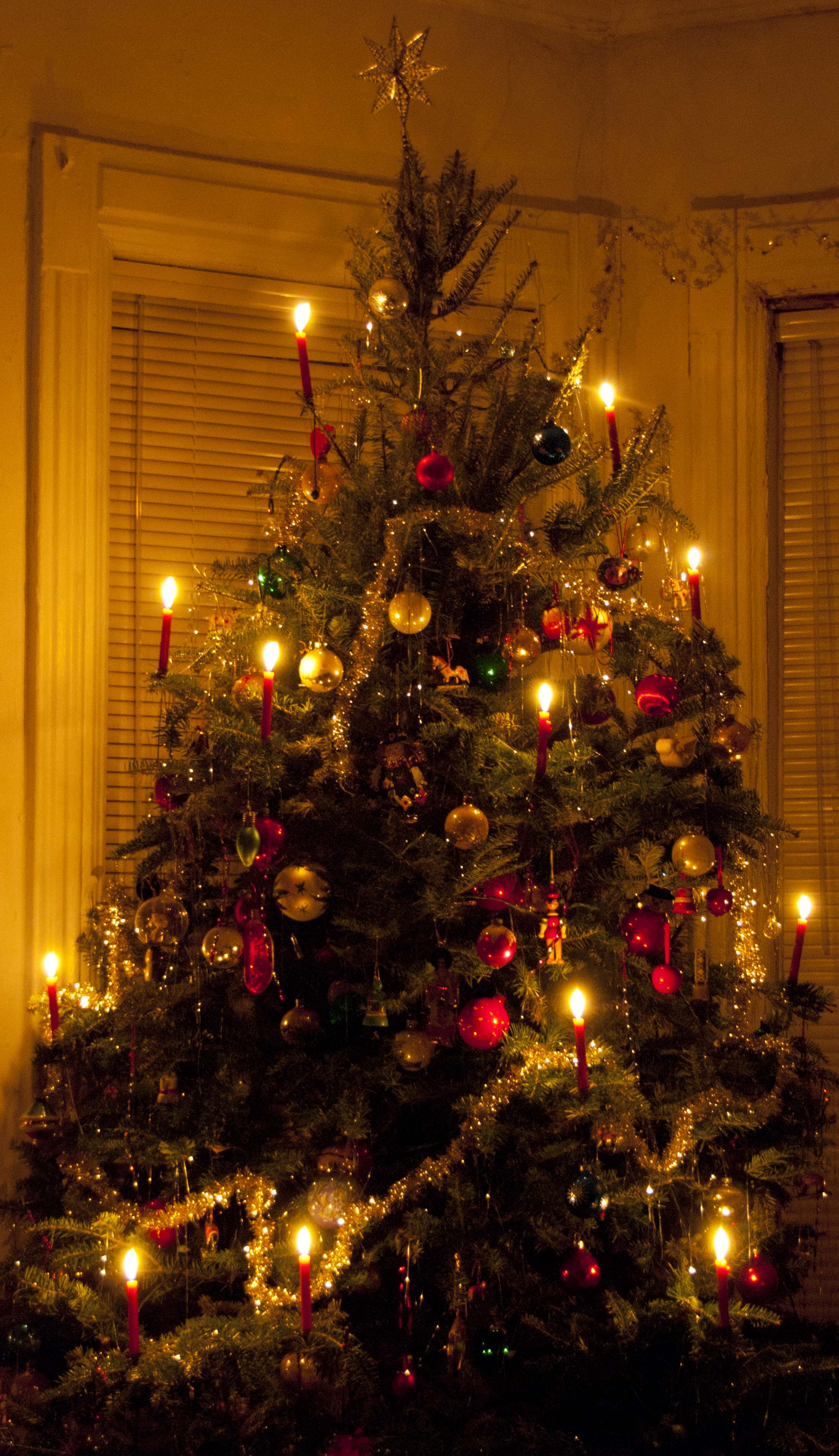 Christmas Tree Light The OldFashioned Way Wind Against Current - Old fashioned christmas decorating ideas
