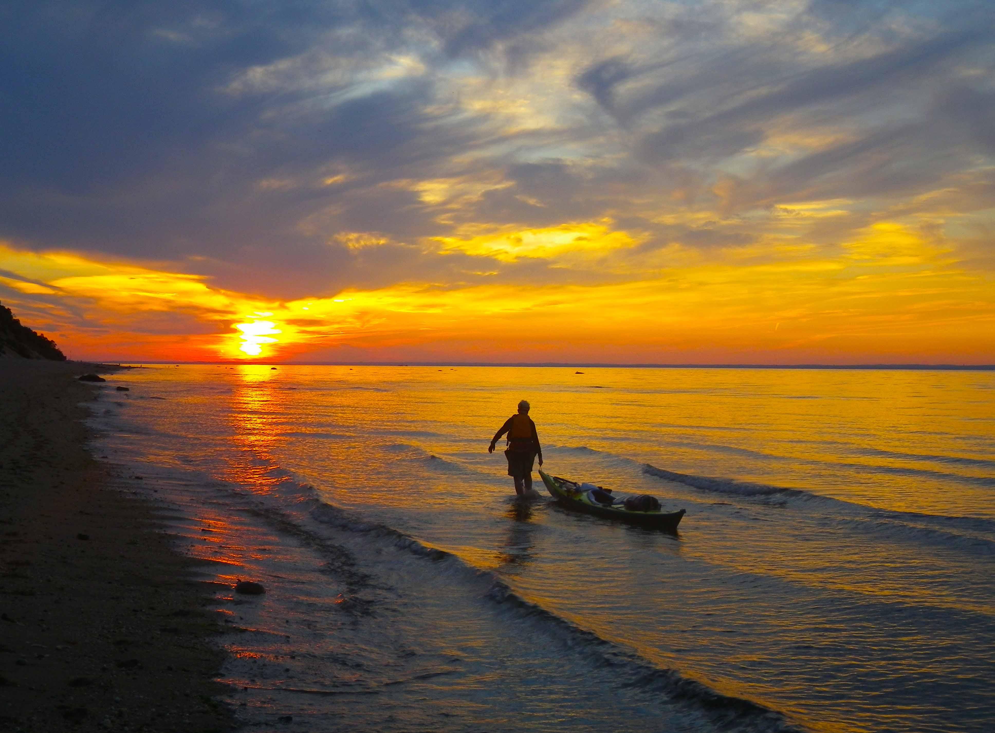Sea Life Kayak Rentals And Kayak Tours