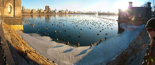 Central Park Reservoir panorama small