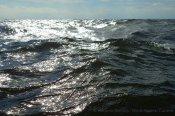 Water texture