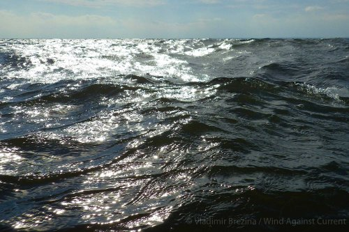 Waves sparkling in the afternoon sun in the Lower Bay of New York Harbor