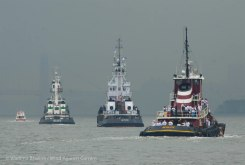 The tug parade heads on up the river