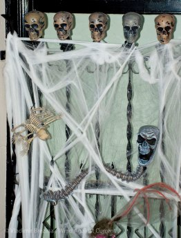 Halloween 2013 8