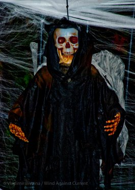 Halloween 2013 11