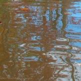 Fall Water 4