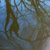 Fall Water 8
