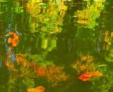 Fall Water 12