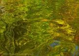 Fall Water 14