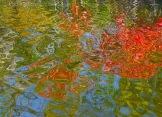 Fall Water 18