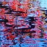 Fall Water 11