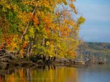 Fall reflections 9