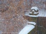 Snowy ledges