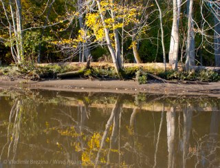 Fall reflections 2