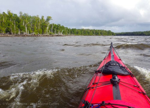 Into Shark River