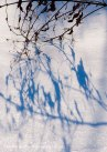 Snow shadows 6