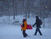 Going sledding