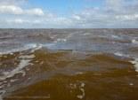 Brown foamy waters