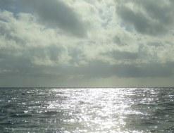 Silvery water