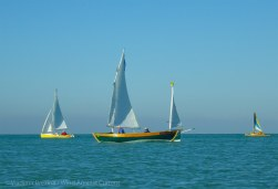 Out in the Gulf with the sailboats