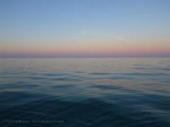 At dawn, off Marco Island