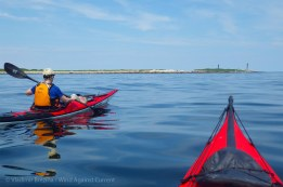 This time we paddle farther out to sea...