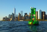 Green buoy, once again