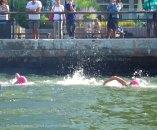 Ederle Swim 2014 14