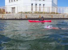 Ederle Swim 2014 20