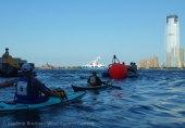Ederle Swim 2014 3