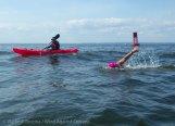 Ederle Swim 2014 45