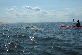 Ederle Swim 2014 47