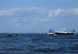 Ederle Swim 2014 52