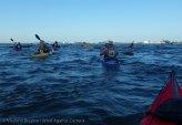 Ederle Swim 2014 5