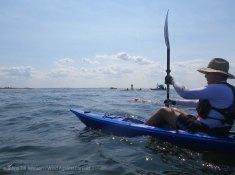 Ederle Swim 2014 51