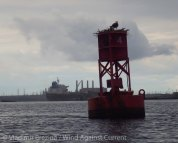 Staten Island circumnavigation 23