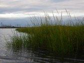 Staten Island circumnavigation 58