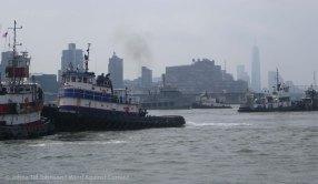 Tugboat Race 2014 22