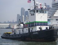 Tugboat Race 2014 29