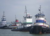 Tugboat Race 2014 34