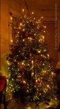 Christmas 2014 3