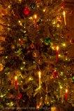 Christmas 2014 4
