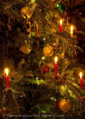 Christmas 2014 13