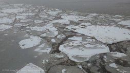 Ice on the river 3