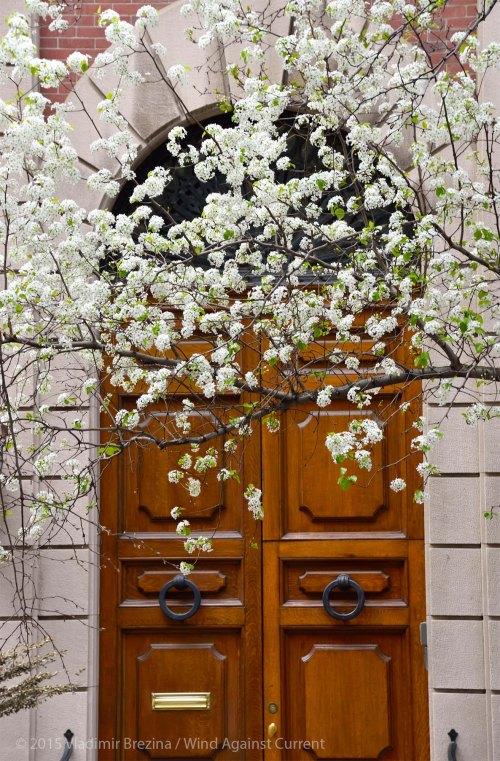Springtime door 3