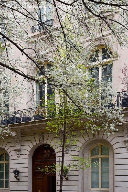Springtime door 1