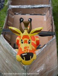 Cardboard Kayak Race 8