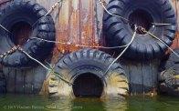 Gowanus Canal 2015 12