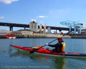 Gowanus Canal 2015 14