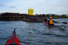 Yellow Submarine Paddle 16